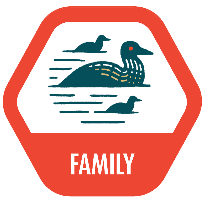 Family icon with illustration of a loon family